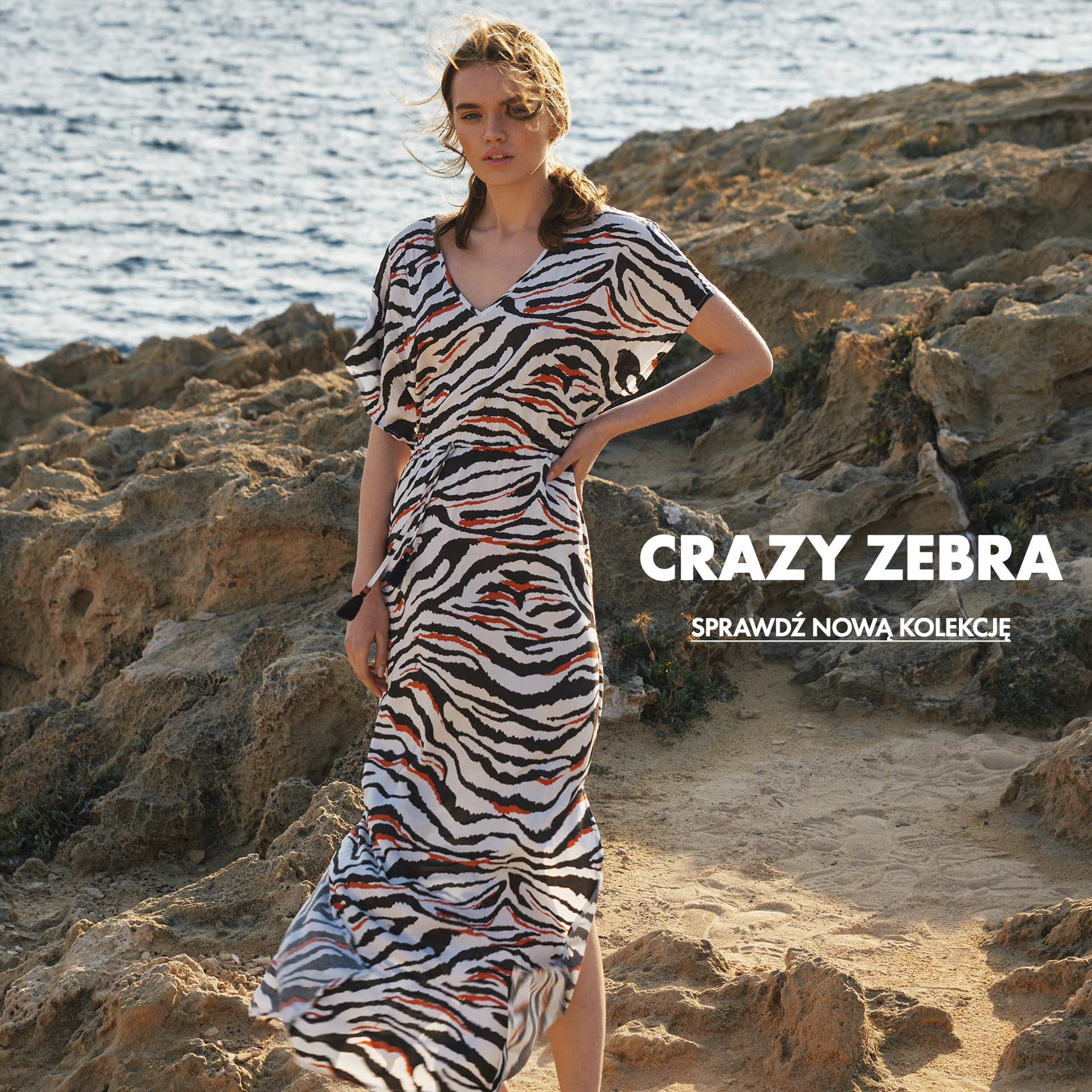 CRAZY ZEBRA colletion